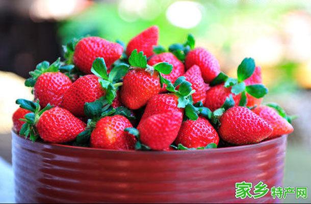 苗栗县特产-大湖草莓相关图片