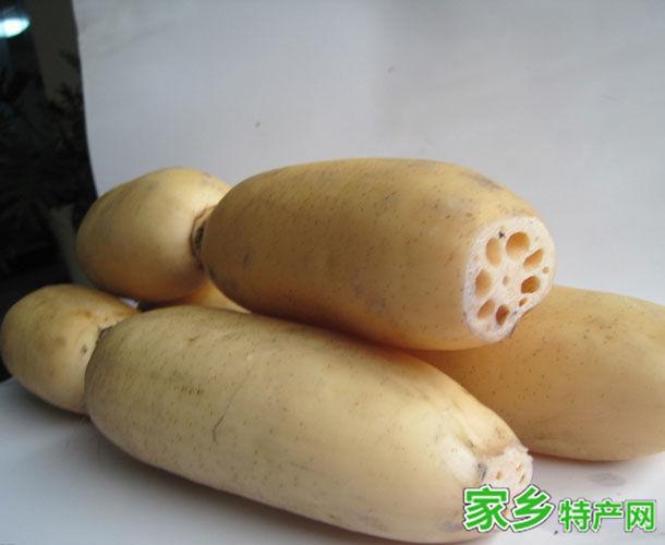 柳江特产-柳江莲藕相关图片